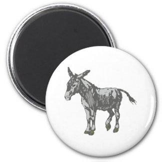 Donkey donkey magnet