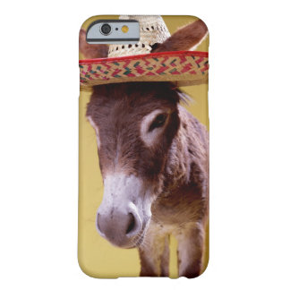 Donkey (Equus hemonius) wearing straw hat Barely There iPhone 6 Case