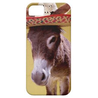 Donkey (Equus hemonius) wearing straw hat iPhone 5 Cover