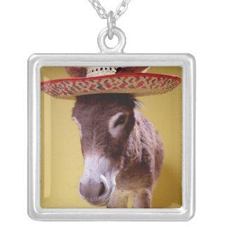 Donkey (Equus hemonius) wearing straw hat Pendants
