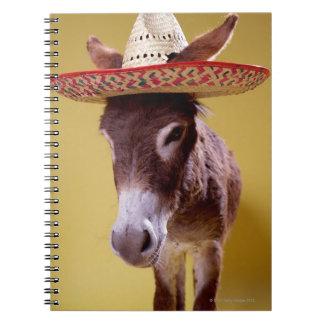 Donkey (Equus hemonius) wearing straw hat Notebook