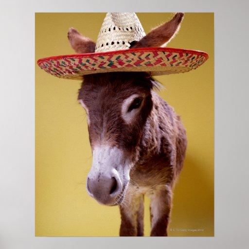 Donkey (Equus hemonius) Wearing Straw Hat Poster