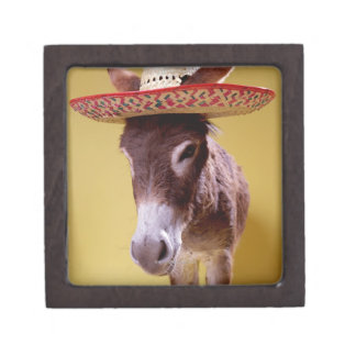 Donkey (Equus hemonius) wearing straw hat Premium Keepsake Boxes