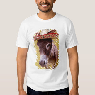Donkey (Equus hemonius) wearing straw hat Tees
