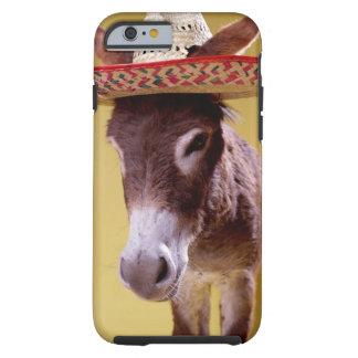 Donkey (Equus hemonius) wearing straw hat Tough iPhone 6 Case