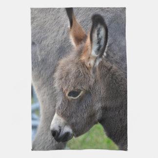 Donkey foal tea towel