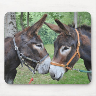 Donkey friends mouse mat