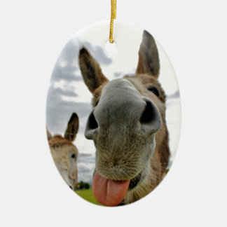 Donkey Humour Christmas Ornament