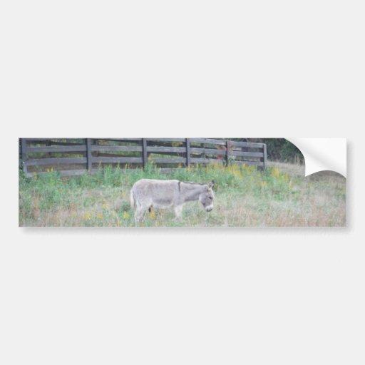 Donkey in a Fall Autumn Field. Bumper Sticker