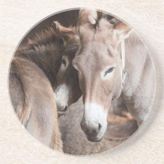 donkey in the farm coaster