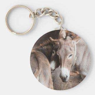 donkey in the farm key ring