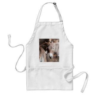 donkey in the farm standard apron