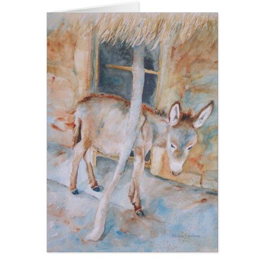 Donkey in the Manger Christmas Card Nativity Scene
