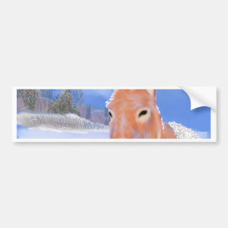donkey in the snow bumper stickers