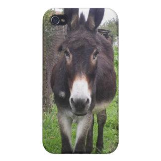 Donkey iphone4 case