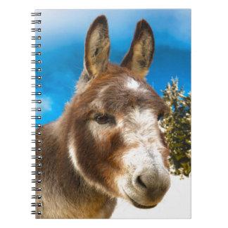 Donkey Notebook