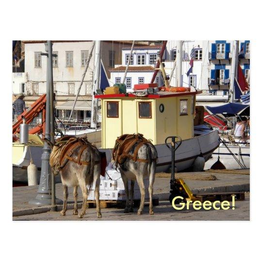 donkey on quay in Greece Postcard