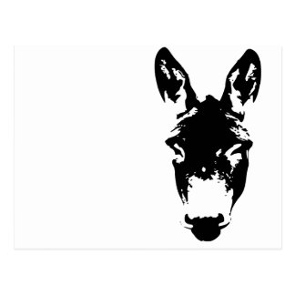 Donkey or Mule Graffiti Drawing Art Postcard