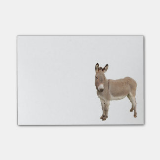 Donkey Painting Design Post-it® Notes