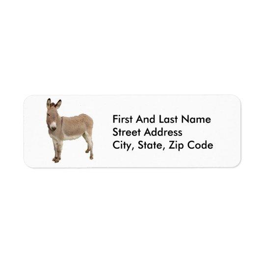 Donkey Photograph Design