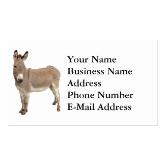 Donkey Photograph Design Business Card Templates