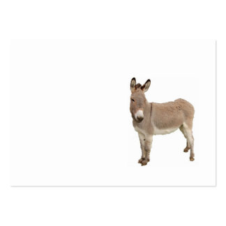 Donkey Photograph Design Pack Of Chubby Business Cards