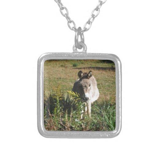 Donkey Picking Yellow Autumn Wildflowers Custom Jewelry