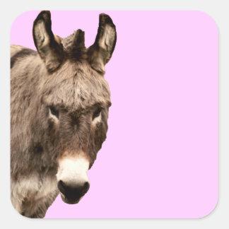 donkey square sticker