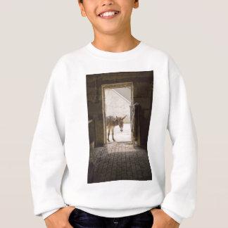 Donkey Sweatshirt