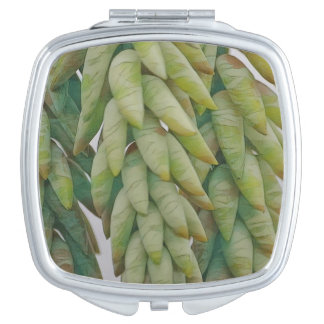 Donkey Tail Succulent Makeup Mirrors