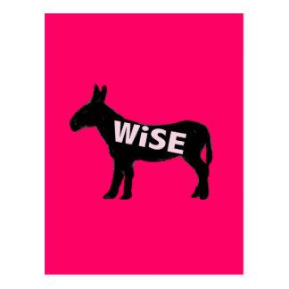 donkey wise ass hot pink postcard