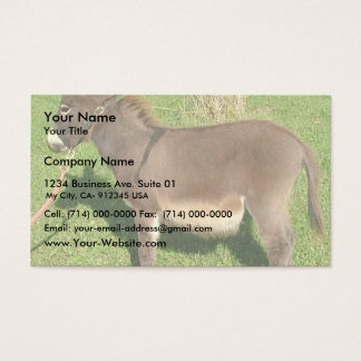 Donkey With The Belt In Neck Business Card