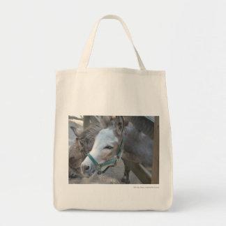 Donkeys Canvas Bags