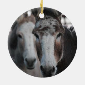 Donkeys Double Sided Ornament