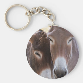 donkeys grazing key ring