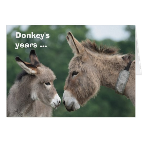 Donkey's years/ears card