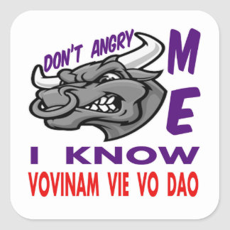 Don't angry me, i know Vovinam vie vo dao. Square Stickers