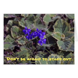 DOn't be afraid to stand out Card