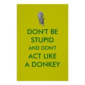 Don't Be Stupid And Don't Act Like A Donkey Poster