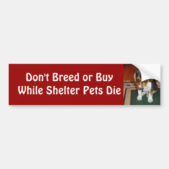 Don't Breed or Buy Bumper Sticker