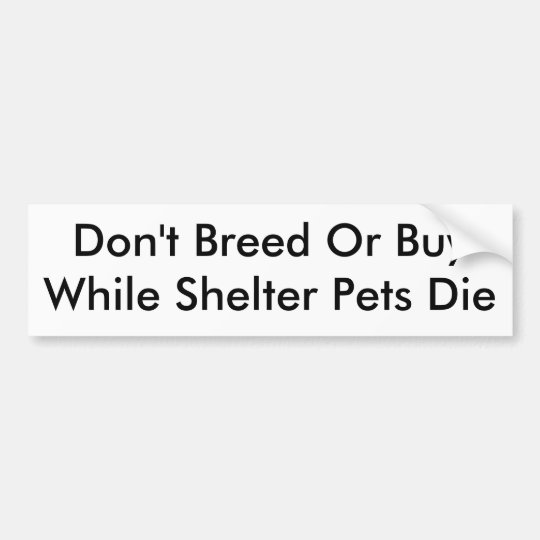 Don't Breed Or BuyWhile Shelter Pets Die Bumper
