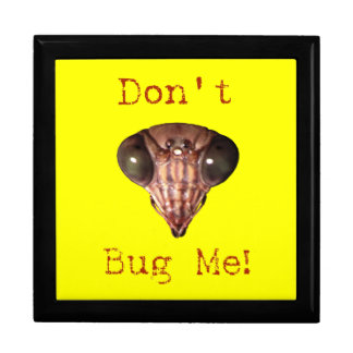 Don't Bug Me Trinket Box