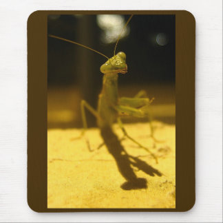 Don't Bug Me! Mouse Pad