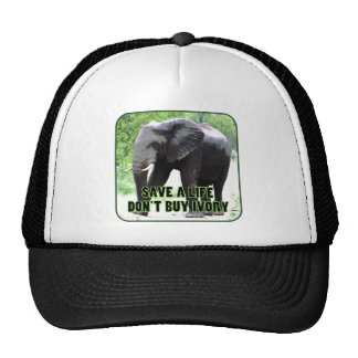 Don't Buy Ivory, Save an Elephant's Life Cap