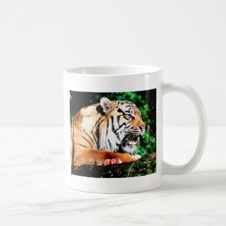 Don't come near basic white mug