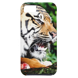 Don't come near case for the iPhone 5