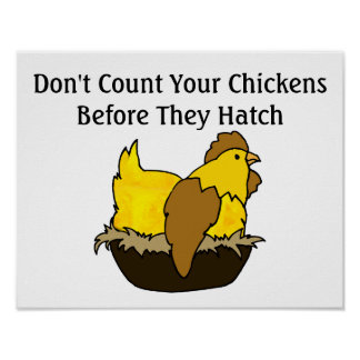 'Don't count your chickens before they hatch ' e.g