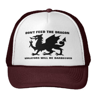 Don't Feed the Dragon Hat