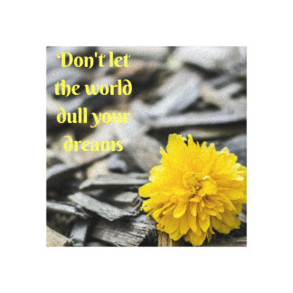 Don't let the world dull your dreams canvas art