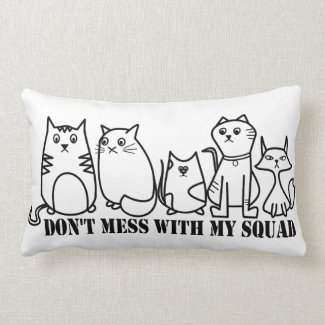 Don't Mess With My Squad Cushion